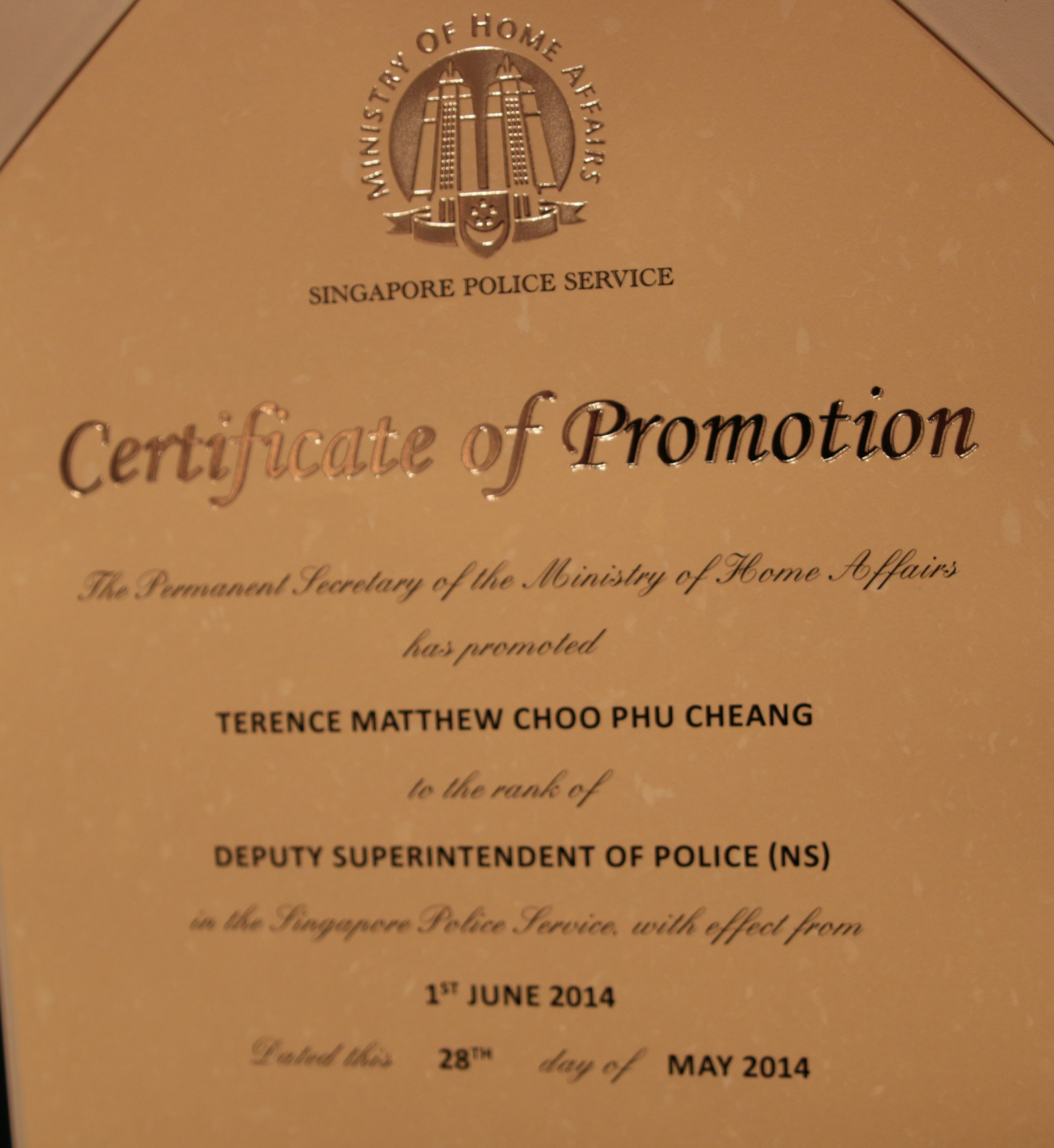 officer promotion certificate template - terence choo imagine you are healthier